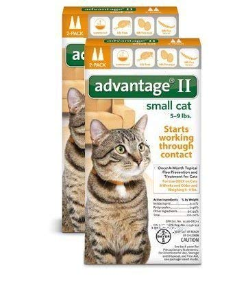 Bayer Advantage 2 Small Cat 2-Pack 5-9  orange (Pack of 2)
