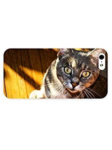 3d Full Wrap Case for iPhone 5/5s Animal Gray Cat90