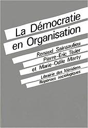La democratie en organisation / vers des fonctionnements collectifs de travail