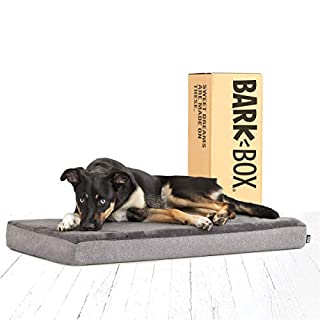 Barkbox Memory Foam Platform Dog Bed | Plush Mattress for Orthopedic Joint Relief | Machine Washable Cuddler with Removable Cover and Waterproof Lining | Includes Squeaker Toy | Grey | Medium
