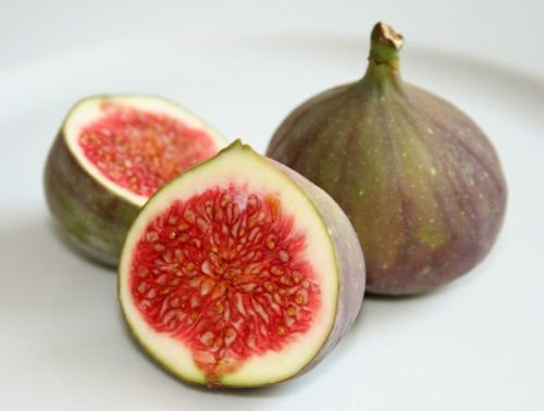 - Organic Heirloom 50 Seeds African Fig Tree Exotic Fruit Seeds Common fig RARE