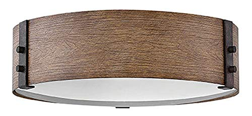 Hinkley 29203SQ Transitional Three Light Outdoor Flush Mount from Sawyer collection in - Collection Flush Outdoor