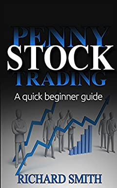 Penny Stock: (penny stocks for beginner, how to trade penny stocks, stock market, day trading, investing, make money with penny stock)