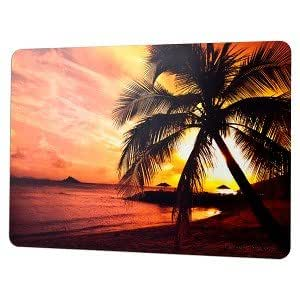HandStands Skinware Laptop Palm Sunset