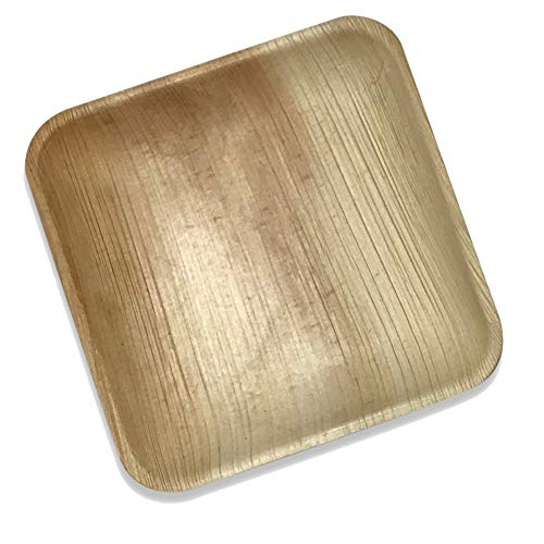 Palm Leaf Square Dinner Plates   25 Pack of 8 Eco Friendly Disposable Dinnerware by Rustic Earthware   Compostable & Biodegradable Plates   Weddings, Showers, Parties, Special Occasions & Gatherings