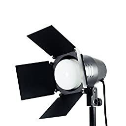 LimoStudio LED Day Light Bulb 2 pcs x Continuous Barndoor Light Stand Kit for Photography Photo Studio, AGG1698V2