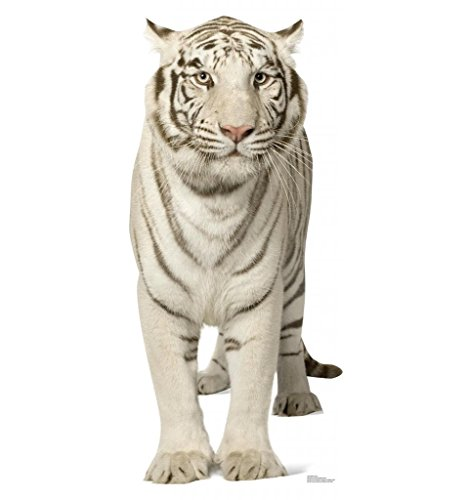 White Tiger - Advanced Graphics Life Size Cardboard Standup