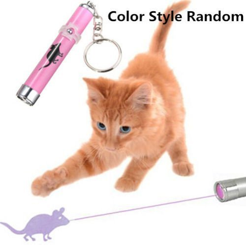KANG--Cat Play LED Laser Pointer Toy With Bright Mouse Animation For Endless Fun - Zelda Life Thug