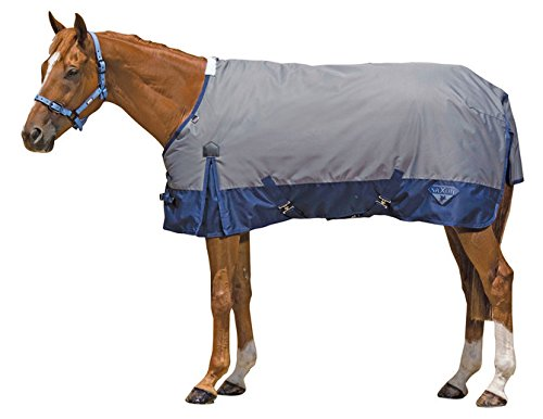 Saxon 600D Standard Neck Medium 2 Tone Turnout Sheet with Gussets, Gray/Navy, Size 72 (Saxon 600d Turnout Sheet)