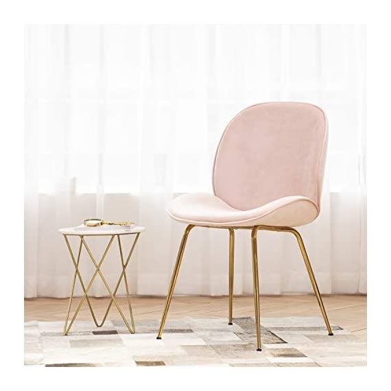 Art Leon Velvet Chair Soft Upholstered Modern Shell Beetle Leisure Chair with Gold Legs for Living Dining Room Bedroom Dresser (Sakura Pink) - Modern and stylish: Classic shell-shaped curved design with practical and beautiful appearance. Lovely sakura pink instantly catch your eyes. Soft velvet upholstery, comfortable and delicate texture. No stimulation of the skin. Advanced gold plating technology makes the coating stays at least for 5 (five) years for indoor use. Ergonomic design: With contoured seat padding, low and mid lumbar support helps to relieve back tightness. Comfy for long time seating. No armrests design provides ample space for a variety of sitting positions, with soft cushion for a superior sitting feeling. To adjust the chair balance by rotating the caps under the legs. - living-room-furniture, living-room, accent-chairs - 41XUH4OWMxL. SS570  -