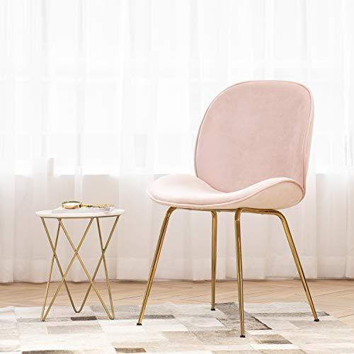 Art Leon Velvet Chair Soft Upholstered Modern Shell Beetle Leisure Chair with Golden Legs for Living Dining Room Vanity Stool for Bedroom Dresser, Sakura Pink