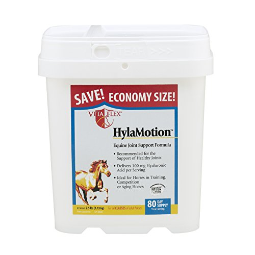 Vita Flex Hylamotion Equine Joint Support - Vita Equine Flex