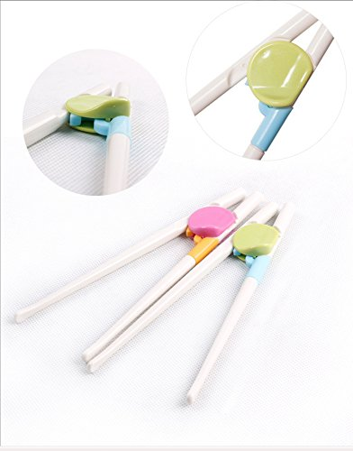 8 Count Compacs Holdstix Training Chopsticks Fun and Easy-to-Use Cheater Chopsticks Reusable /& Dishwasher Safe Plastic Chopsticks for Kids /& Adults