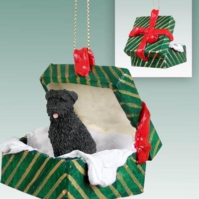 Conversation-Concepts-Bouvier-des-Flandres-Gift-Box-Green-Ornament