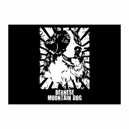 Teeburon Bernese Mountain Dog Oriental Sun Golden Edition Pack of 4 Decal