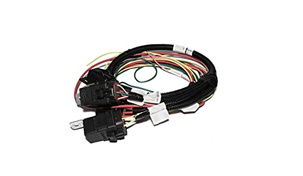 FAST 301406 Fuel Injection Harness Harness Fast Fan And Fuel Pum P on