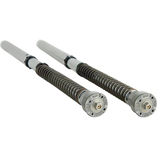 Ohlins Fork Cartridge Kit - Ohlins FGK 231 Fork Cartridge Kit (Road And Track 30Mm Front Fgk 231 30Mm Kit R Nine T)