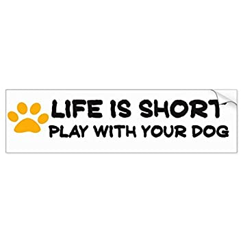 Life is short play with your dog bumper sticker sticker graphic beware of dog