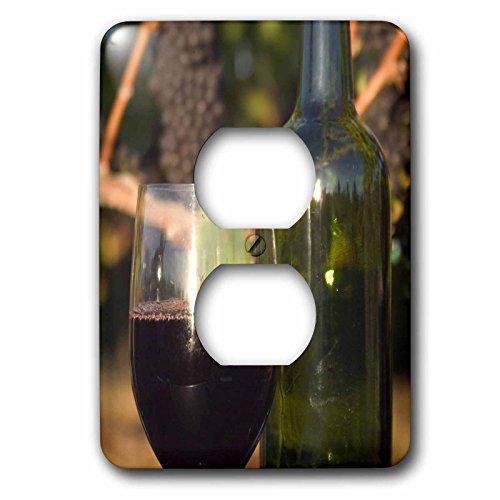 Danita Delimont - Wineries - Pinot Noir wine, Sherwood area, Oregon - US38 JMI0804 - Janis Miglavs - Light Switch Covers - 2 plug outlet cover (lsp_93796_6) (Best Oregon Pinot Noir Wineries)