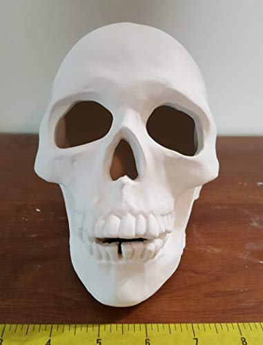 Ceramic Human Skull unpainted ceramic bisque ready to be painted ()