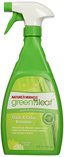 Natures Miracle Green Stain Remover