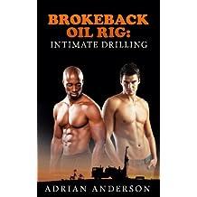 3 results for Kindle Store : Kindle eBooks : Lesbian, Gay, Bisexual & Transgender eBooks : Brokeback Oil Rig