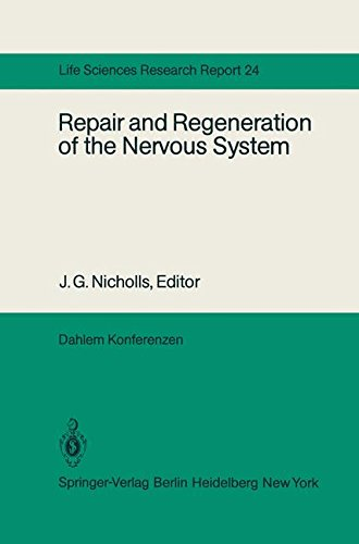 Migration Cord (Repair and Regeneration of the Nervous System: Report of the Dahlem Workshop on Repair and Regeneration of the Nervous Sytem Berlin 1981, November 29 ― December 4 (Dahlem Workshop Report))