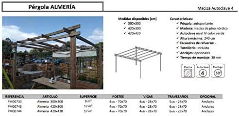 Pérgola de Madera Modelo Almería Plimfers 420x420 cm: Amazon.es: Hogar