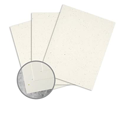 ENVIRONMENT Tortilla Paper - 8 1/2 x 11 in 24 lb Writing Smooth 50% Recycled Watermarked 500 per Ream