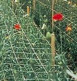 Hortonova 9fa 48''x328' Plant Support & Trellis