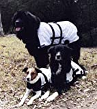Infrared Magnetic Therapy Dog Jacket, Extra Small