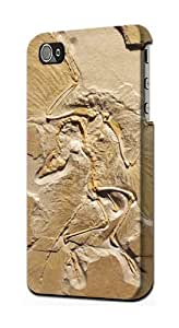 S0380 Dinosaur Fossil Case Cover for IPHONE 5C
