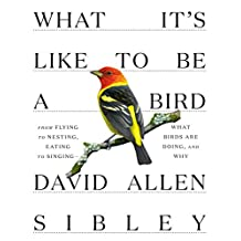 What It's Like to Be a Bird: From Flying to Nesting, Eating to Singing--What Birds Are Doing, and Why
