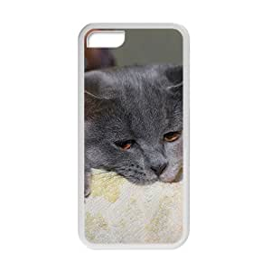 Handsome Cat With Bubble Phone Case for Iphone 5c