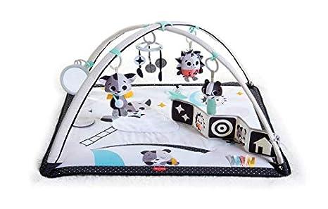Tiny Love Gymini Deluxe Infant Activity Gym Play Mat, Tiny Princess Tales