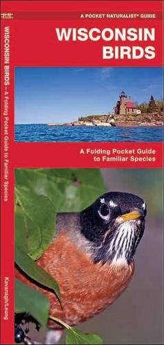 Wisconsin Birds: A Folding Pocket Guide to Familiar Species (A Pocket Naturalist Guide)