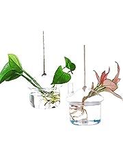 Ivolador Terrarium Container Flower Planter Hanging Glass for Hydroponic Plants Home Garden Décor