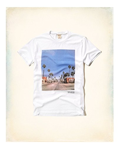 hollister-hco-mens-logo-graphic-t-shirt-tee-white-xl-white-29-tee