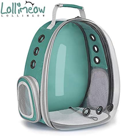 Lollimeow Transparent Backpack Breathable Sightseeing product image
