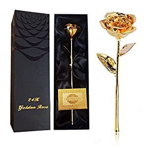 IDOXE 24K Gold Plated Real Rose Flower 11 Inches Long Stem Everlasting Dipped Rose Gift 6