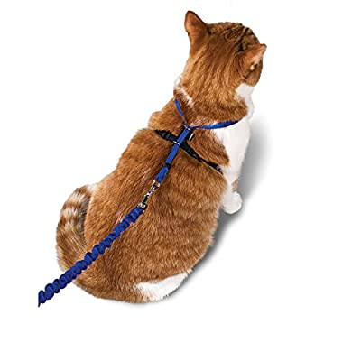 Premier Pet Come with me Kitty Harness