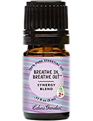 Breathe In, Breathe Out OK For Kids Synergy Blend Essential Oil by Edens Garden - 5 ml