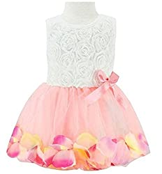 EGELEXY Toddler Baby Kids Girls Princess Party Tutu Lace Bow Flower Dresses 1T Rose