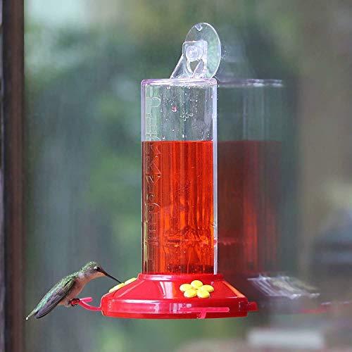 Perky-Pet 217 Window Mount Plastic Hummingbird Bird Feeder, 8 Oz Nectar Capacity
