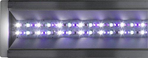 Econlux SolarStinger SunStrip 70W Marine RGB/W/B 65cm45,5W für Meerwasseraquarien