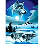 Super Soft Running Wolves Wolf Blanket Queen Size