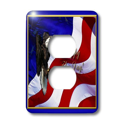 3dRose lsp_20160_6 Flag Day Bald Eagle with American Flag Light Switch Cover