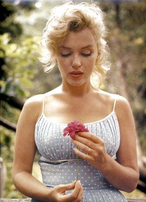 Marilyn Monroe, Flower - Sam Shaw | Art Print Poster (Wholesale Marilyn Monroe)