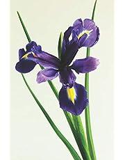The Iris Journal: For Flower Lovers and Women Named Iris