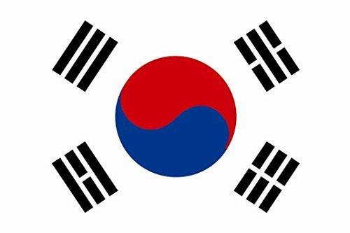 U24Bandiera della Corea del Sud Boot Bandiera qualità premium 20x 30cm
